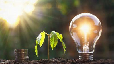 Stakeholder Consultation: Regional Energy Efficiency – Labelling Scheme