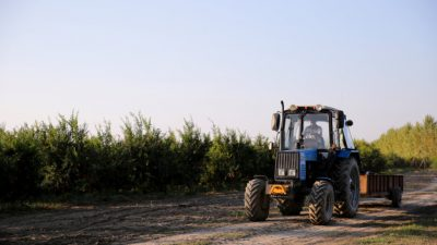 For Public Comment: Draft National Standards for Good Agricultural Practices