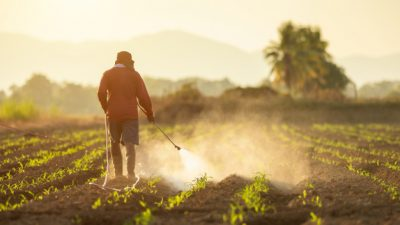 For Public Comments: Draft CARICOM Regional Standard For Pesticides Labelling