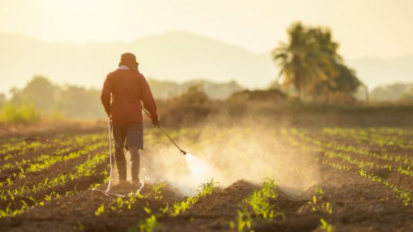 Stakeholder Focus Group For The Draft Regional Standard On Pesticides Labelling