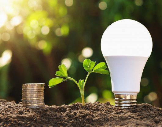 For Public Comment: Energy labelling – Compact fluorescent lamps and Light Emitting Diode Lamps – Compulsory Requirements